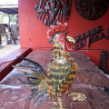 Mean Rooster